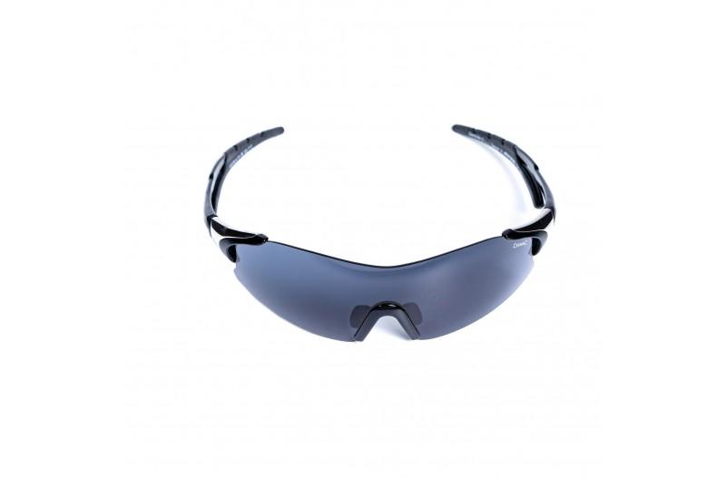 Спортивные очки ALPINA DARKTSITE-SHIELD 8328/431