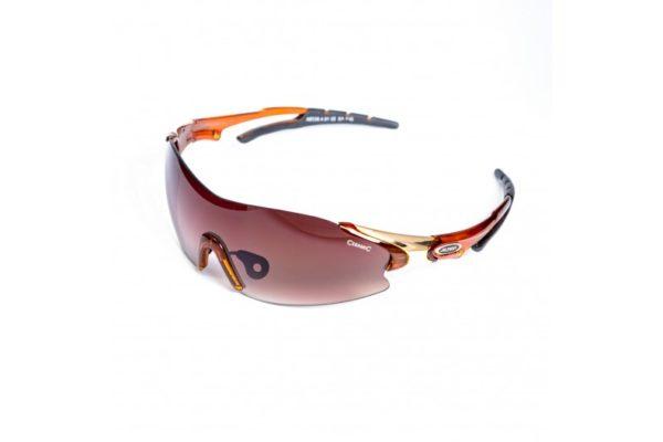 Спортивные очки ALPINA DARKTSITE-SHIELD 8328 491