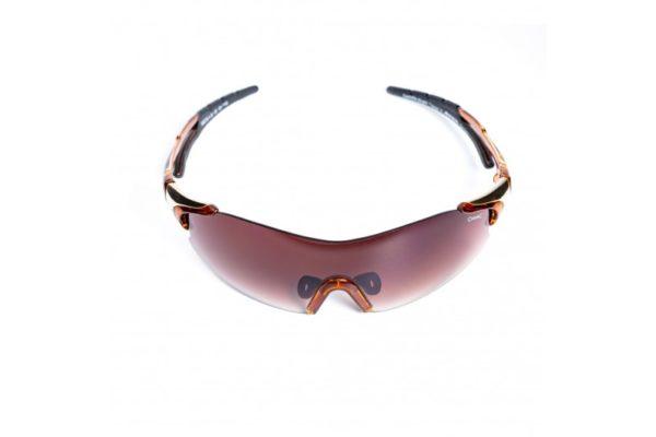 Спортивные очки ALPINA DARKTSITE-SHIELD 8328/491